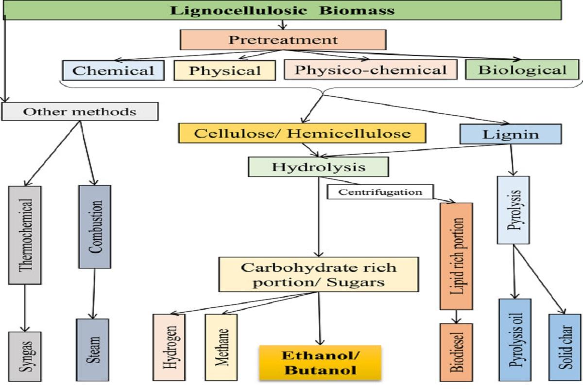 تصویر تولید اتانول از زیست توده