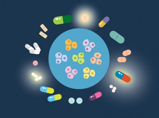 داروهای غیر سرطانی قادر به از بین بردن سلولهای سرطانی در آزمایشگاه هستند