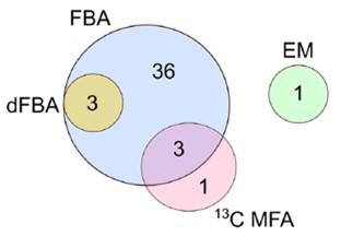 مدلسازی متابولیکی میکروجلبک