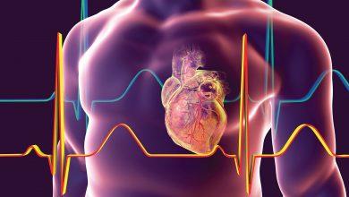 Photo of سلول درمانی قلب؛ مرگ یا زندگی؟