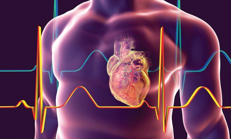 سلول درمانی قلب؛ مرگ یا زندگی؟