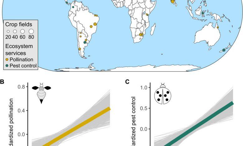 کاهش تنوع زیستی در اکوسیستم