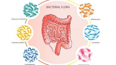 Photo of تأثیر شگرف تغذیه و رژیم غذایی بر میکروبیوم روده