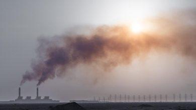 Photo of سهم گاز متان در گرمای جهانی