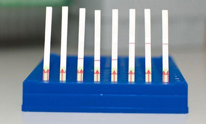 سیستم SHERLOCK مبتنی بر CRISPR-Cas13 قبلاً نشان داده بود كه قادر است با دقت وجود تعدادی از ویروسهای مختلف را در نمونههای بیمار تشخیص دهد. این سیستم ردپاهای منحصر به فرد اسید نوکلئیک را جستجو میکند و از یک نوار تست، مشابه آزمایش بارداری، برای ارائه بازخوانی دیداری استفاده میکند. پس از فرو بردن نوار کاغذی در یک نمونه آماده شده، خطی بر روی کاغذ ظاهر میشود که نشان دهندهی وجود یا عدم وجود ویروس است.