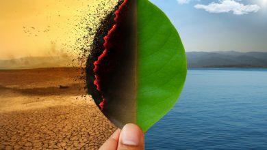 Photo of بررسی نقش تغییرات آب و هوایی در تولید پاتوژن ها