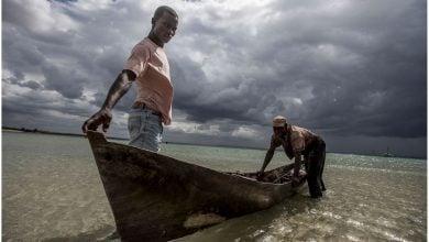 Photo of بررسی اهمیت توسعه پایدار توسط جنبش جهانی اقیانوس شناسی