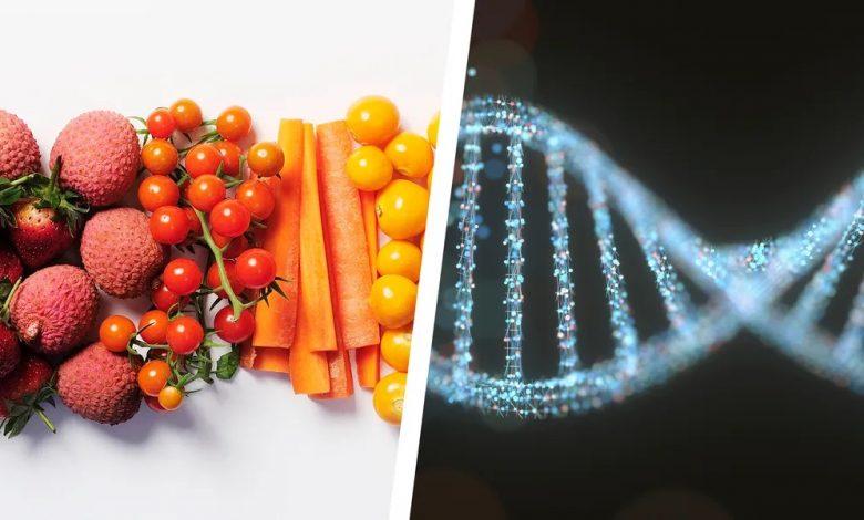 رژیم غذایی با تست DNA