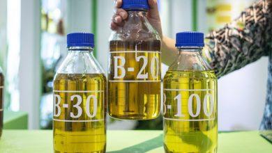 Photo of بررسی انتقادی بیودیزل به عنوان سوخت جایگزین