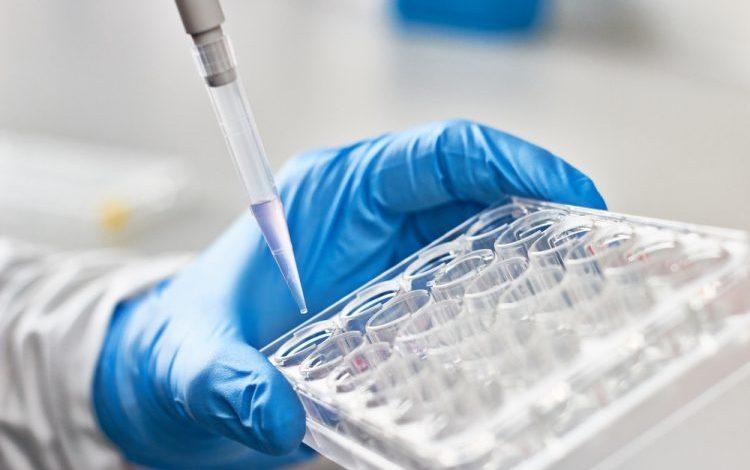 سه ارزیابی جدید برای آزمایش آنتی ویروس های کووید-19 توسعه یافته است.