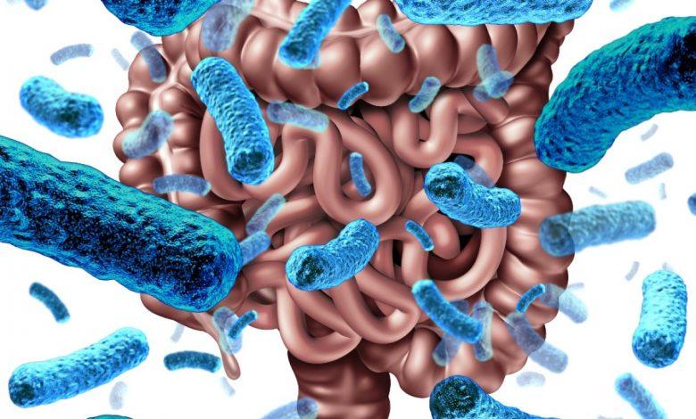 بررسی نقش دکستران سولفات سدیم در کولیت توسط تغییرات میکروبی روده
