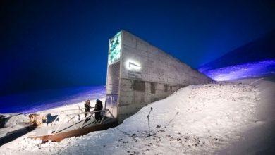 Photo of 60 هزار نمونه بذری جدید در خزانه بذری Doomsday در قطب شمال