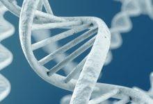Photo of توالی یابی ژنومی در نمونه های کووید-19