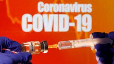 Photo of ابزاری جدید برای تولید واکسن COVID-19