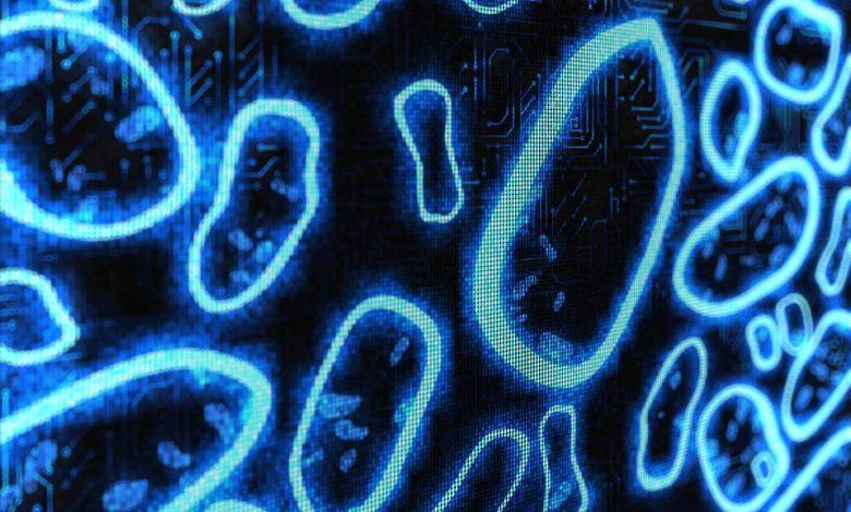 """آیا موفقیت طراحی به کمک رایانه (CAD)، برای """"زیستشناسی به کمک رایانه"""" هم اتفاق میافتد?"""