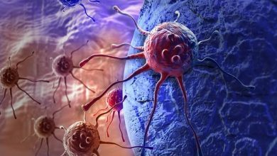Photo of راهی برای تقویت سلول های کشنده ذاتی(NK cells)