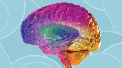 Photo of افراد تنها، امضای مغز متفاوت دارند
