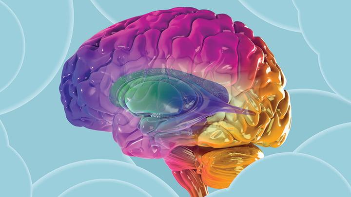 امضای مغز