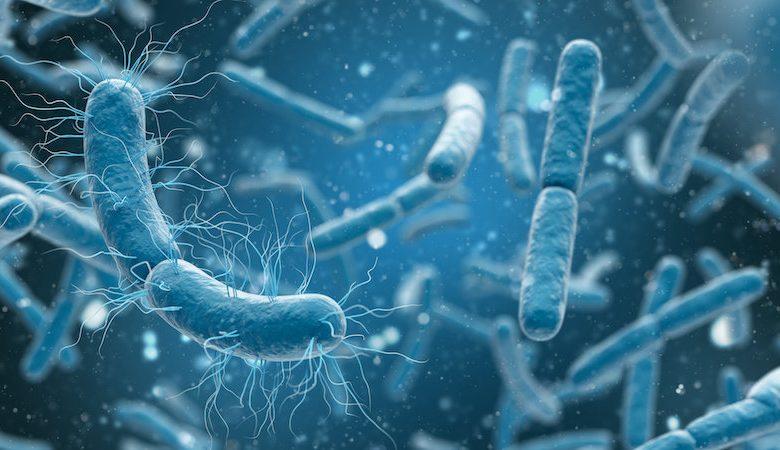 باکتریهای مقاوم به آنتی بیوتیک