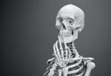 Photo of درمان بیماریهای اسکلتی با سلول استخوانی کشف شده