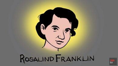 Photo of روزالین فرانکلین مالباختهای علمی، قهرمانی مغفول
